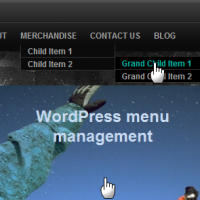 Multiple Navigation menus using WordPress Menu 3.0 with Thesis Theme