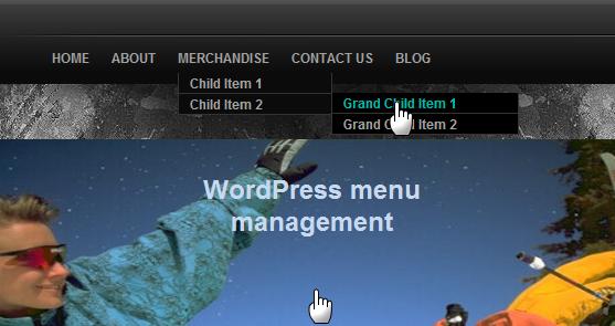 Custom navigation bar wordpress thesis