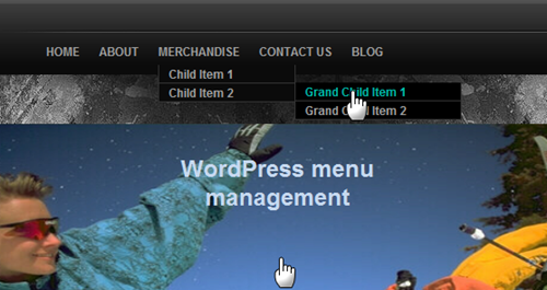 Multiple Navigation menus using WordPress