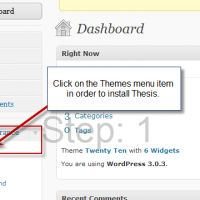 Tutorial to Install Thesis Theme on a WordPress Blog in 3 steps