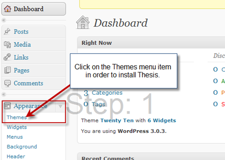 step1-install-thesis-theme-tutorial