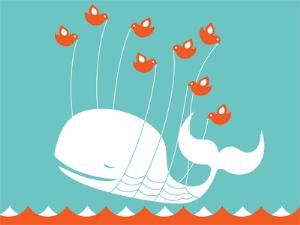 twitter-stream-whale