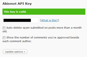 step3-API key Valid akismet plugin on wordpress