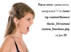 Thesis Custom Function error