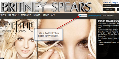 britney-spears-website-using-follow-button