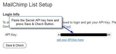 Save API Key WordPress thumb Easy way to add MailChimp Subscription Form on WordPress Blog